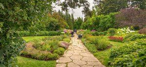 Il n'est pas rare de voir des plantes vivaces dans un nouveau jardin, un paysagiste de Soumissions Paysagistes vous le conseillera même.